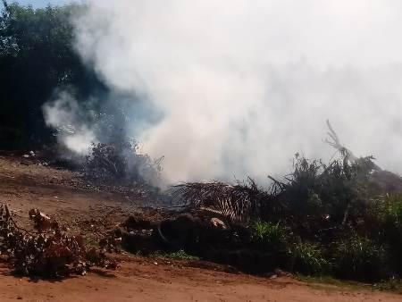 Hemerson Buiu pede fiscalização contra queimadas na área urbana de Bela Vista