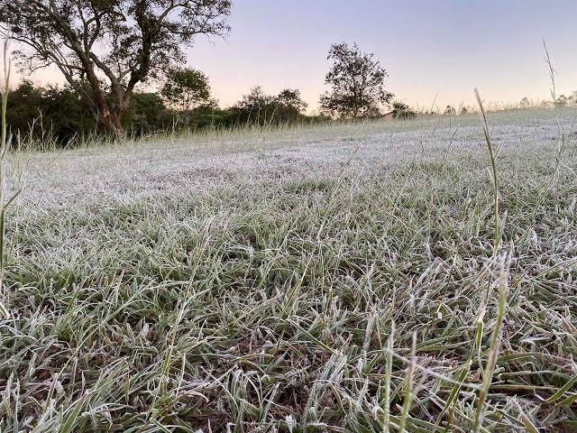 Quinta-feira começa com geada e temperatura de 5º C em Bela Vista